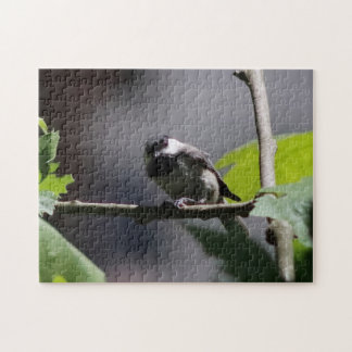 Bird, Photo Puzzle. Jigsaw Puzzle