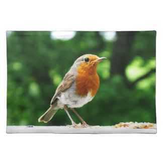 Bird Placemats, with image of a robin , Place Mats