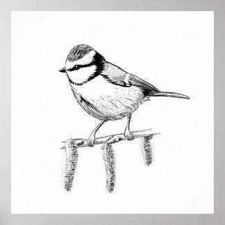 Bird Poster / Wall Art Blue-tit