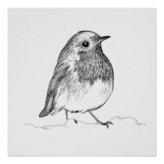 Bird Poster / Wall Art Robin