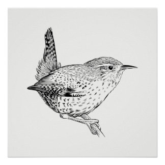 Bird Poster / Wall Art Wren