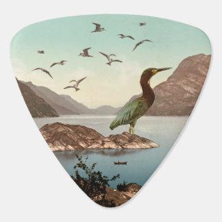 Bird Sanctuary Guitar Pick