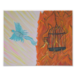 Bird Set Free Photo Print