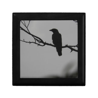 Bird silhouette gift box