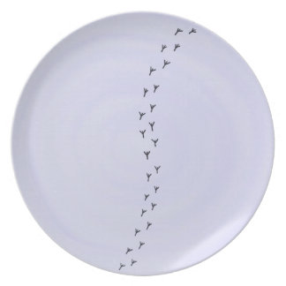Bird tracks on pastel blue plate