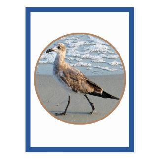 Bird Walks By Sea Circle Card