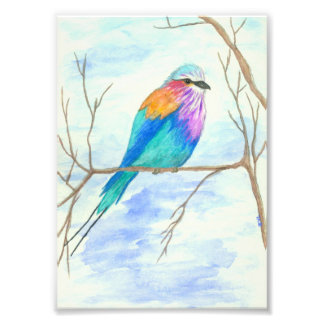 Bird Watercolor Art Lilac Breasted Roller in Tree Photo Print