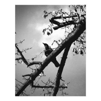 Bird Wildlife Animal Branch Sitting Bird Letterhead