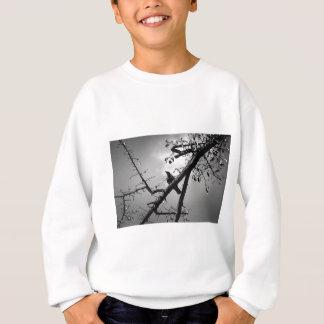 Bird Wildlife Animal Branch Sitting Bird Sweatshirt