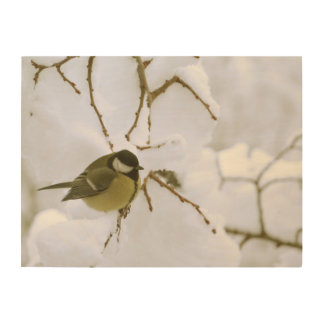 Bird Winter Photo Wood Wall Art