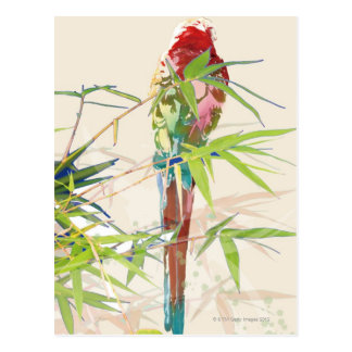 Bird with Bamboo Leaves Postcard