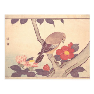 Bird with Camellias Postcard