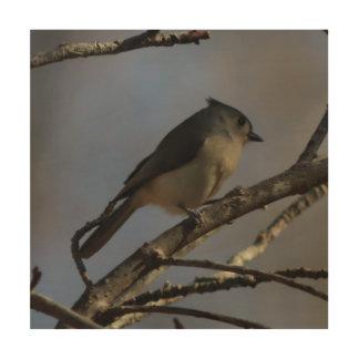 Bird, Wood Photo Print. Wood Print