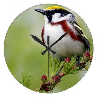 Bird yellow_reloj wallclocks