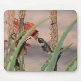 birdeye mouse pad