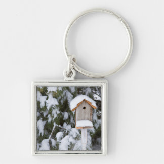 Birdhouse near pine tree in winter Silver-Colored square keychain