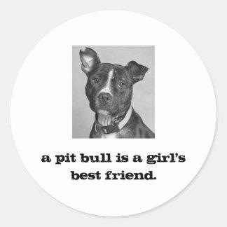 BIRDIE, a pit bull is a girl's best friend. Classic Round Sticker