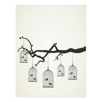 Birdie in a cage3 postcard