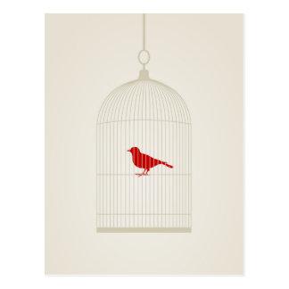 Birdie in a cage postcard