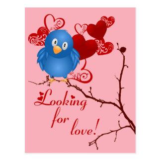 Birdie Love Postcard