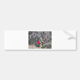 Birdie Perch Bumper Sticker