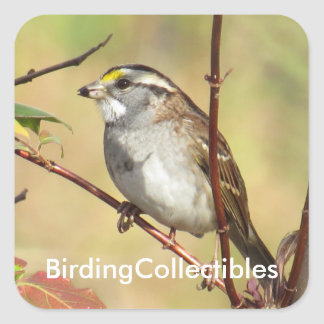BirdingCollectibles Stickers