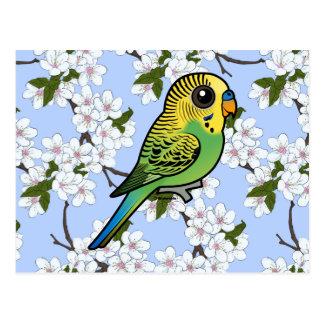 Birdorable Budgerigar Postcard