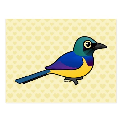 Birdorable Golden-breasted Starling Postcards