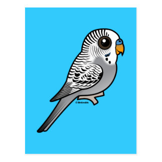 Birdorable Grey Budgie Postcard