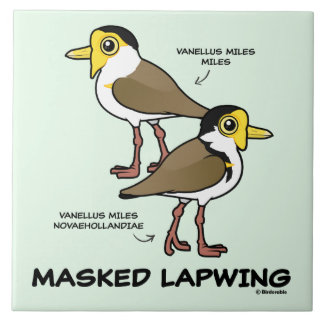 Birdorable Masked Lapwing subspecies Tile