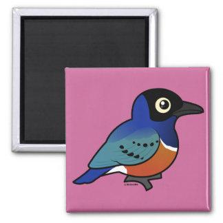 Birdorable Superb Starling Magnet
