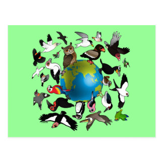 Birdorables Around the World Postcard