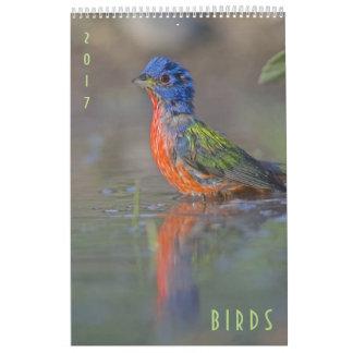 Birds 2017 Wildlife Wall Calendar
