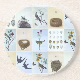 Birds and Nests Drink Coaster