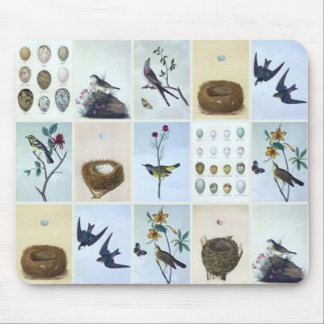 Birds and Nests Mouse Pad