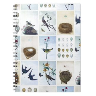 Birds and Nests Notebook