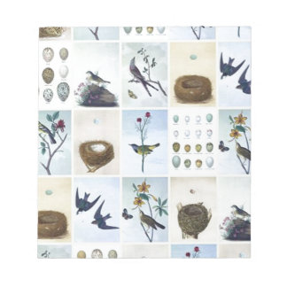 Birds and Nests Notepad