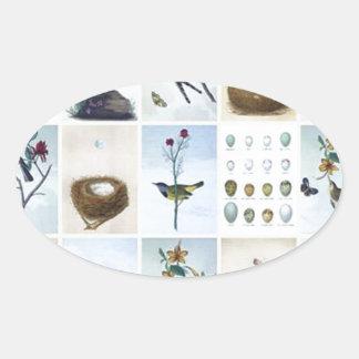 Birds and Nests Oval Sticker