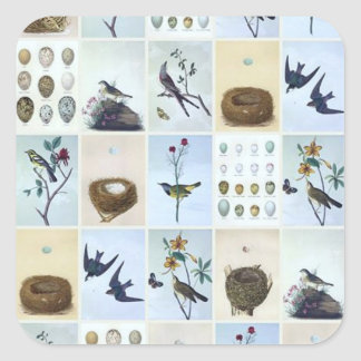 Birds and Nests Square Sticker