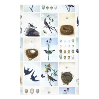 Birds and Nests Stationery