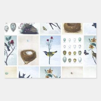 Birds and Nests Sticker