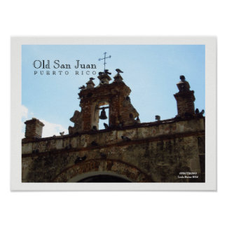 Birds at Old San Juan Puerto Rico Poster