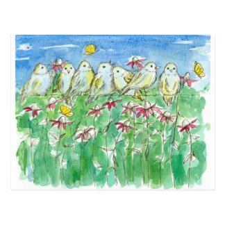 Birds Butterflies Coneflower Watercolor Flowers Postcard