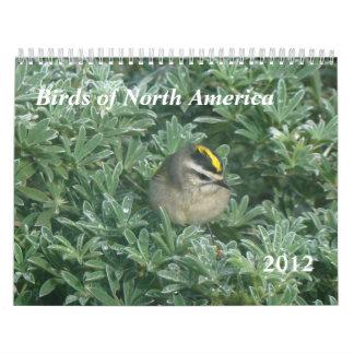 Birds Calendar 2012