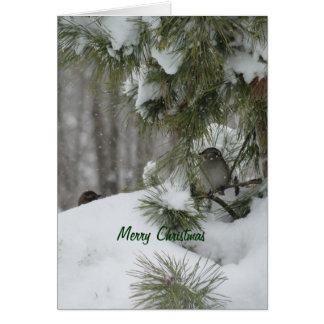 Birds Christmas Shelter Card