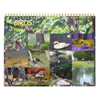 Birds Digital Photo Calendar