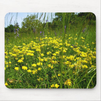 Birds-foot Trefoil Mouse Mat