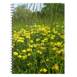 Birds-foot Trefoil Spiral Photo Notebook
