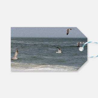 Birds In Flight by Shirley Taylor Pack Of Gift Tags