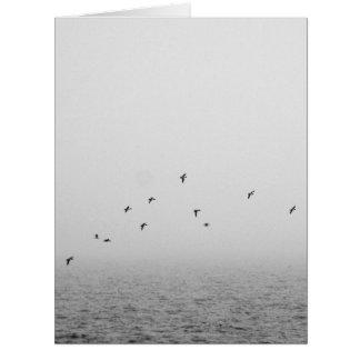 Birds in fog card
